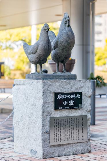 私たちの地域資源、名古屋コーチン